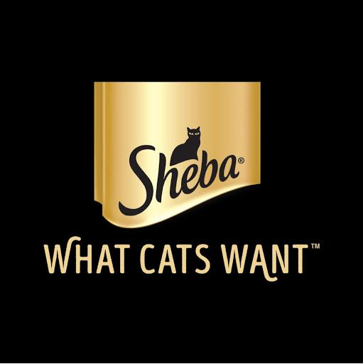 SHEBA® Brand  Google+ hayran sayfası Profil Fotoğrafı