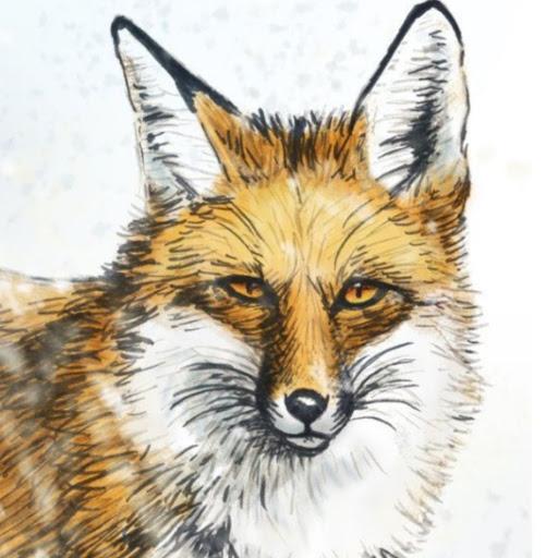 user Scarlet Fox apkdeer profile image
