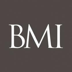Business Management Institute  Google+ hayran sayfası Profil Fotoğrafı