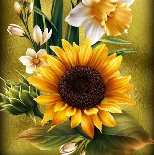 user Christine Hillaert apkdeer profile image