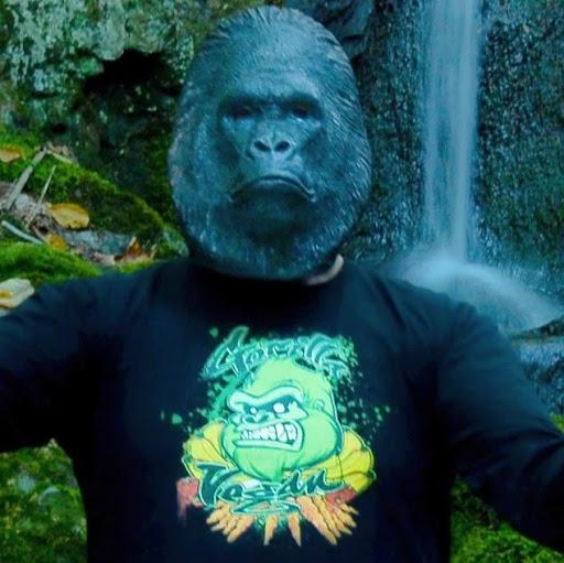 Vegan Kong
