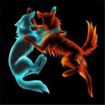 Fire and water wolf avatar