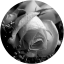 Image Google de RABRE Lucile