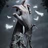 MarineCat6 's profile image