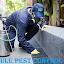 LuLu Pest Control