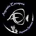 Aquatic E.,AutoDir