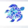 Blue_ turtle36's profile image