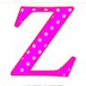 zh24096