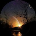 Image Google de Darlingtonia Sarraceniacée