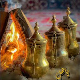 Abu Turki
