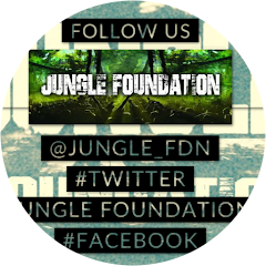 Jungle foundation