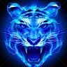 Blue Tiger Profil Resmi