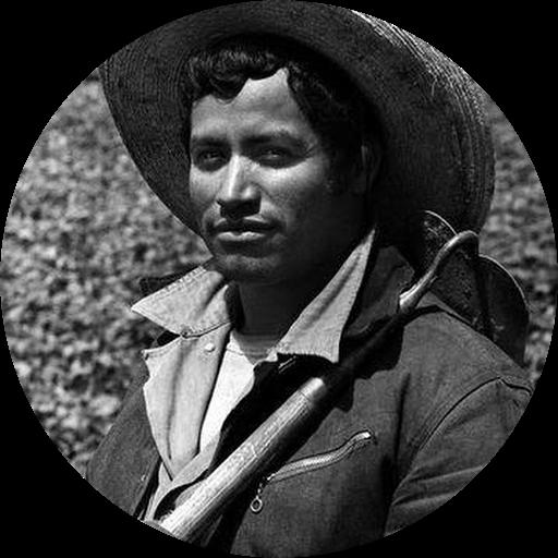 Noe Chavez