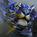 Jack Ara's profile image