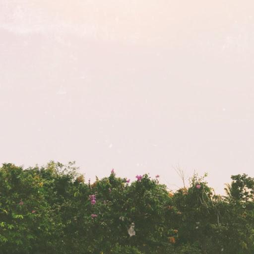 Nguyên Bùi Thị Thanh picture