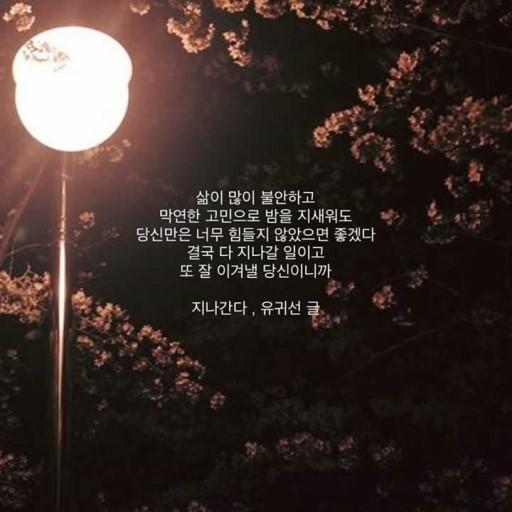 Midnight Alone