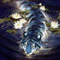 Snow Leopard's profile image