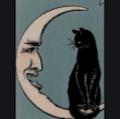 jocelynn kamay's profile image