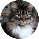 Profilbild von Dorothee Yoga_leben