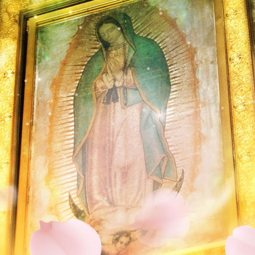 Profile photo of Andrea