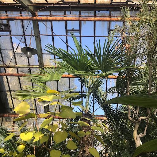 Viktoriia Chistiakova