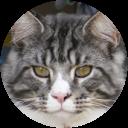 Image Google de sandrine hénaff