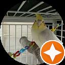 Mr. Cockatoo