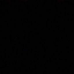 Combat Schnecke