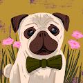 cashton hends's profile image