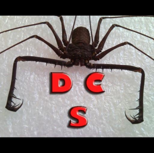 Dark Cave Spider's avatar