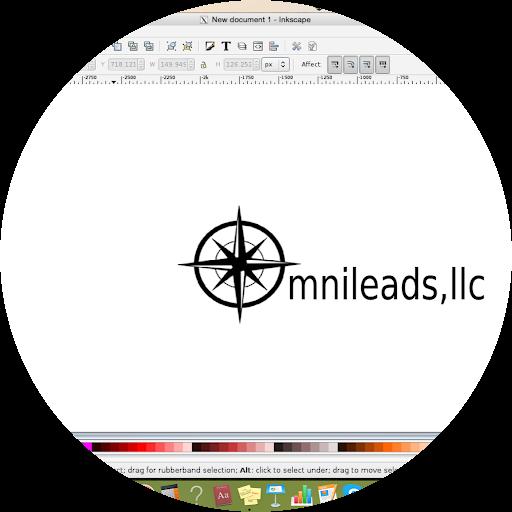 OMNILEADS, LLC Digital Marketing & Consultation