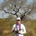 Sandra Dowling's profile image
