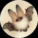 Kirsche Maus