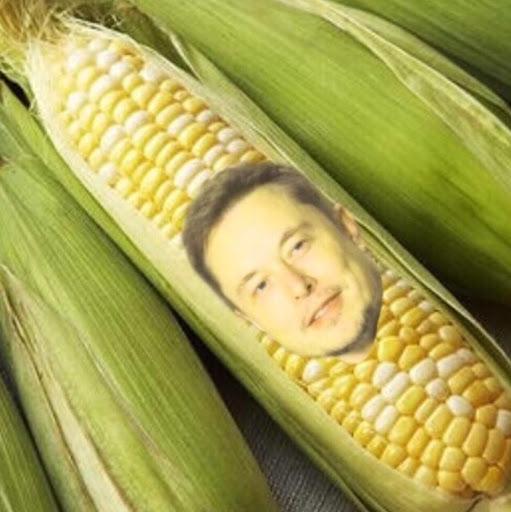 Elon Husk
