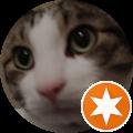 AliFatCat