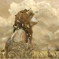 Dina Aissiou's profile image