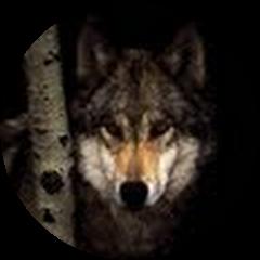 Kelli Wolf Avatar