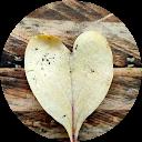 Mel Dale
