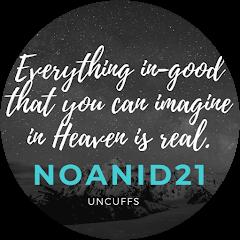 Noanid21 Avatar