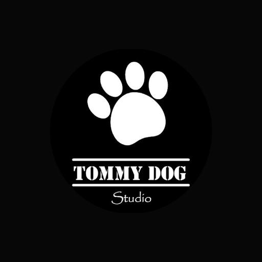 Tommy Dog Games