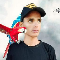 NAVED