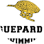 GUEPARDS SWIMMING SEK