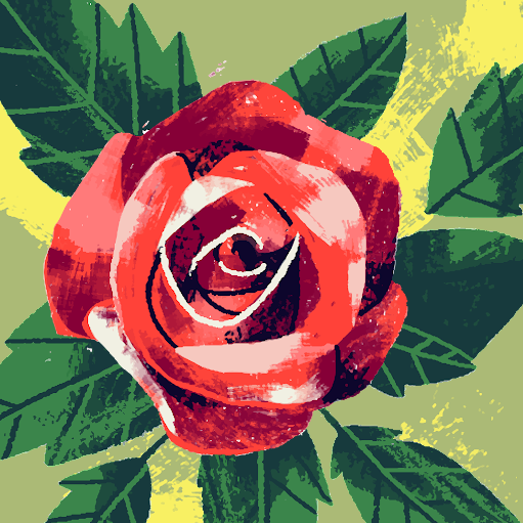 Shamitha G