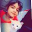 Javed Mansab