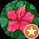 TX Meme-Alt Account