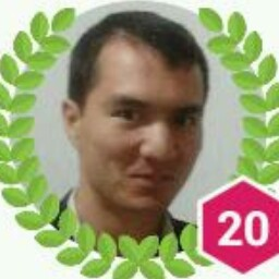 Majid Dizangian
