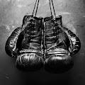 Fight Night's profile image
