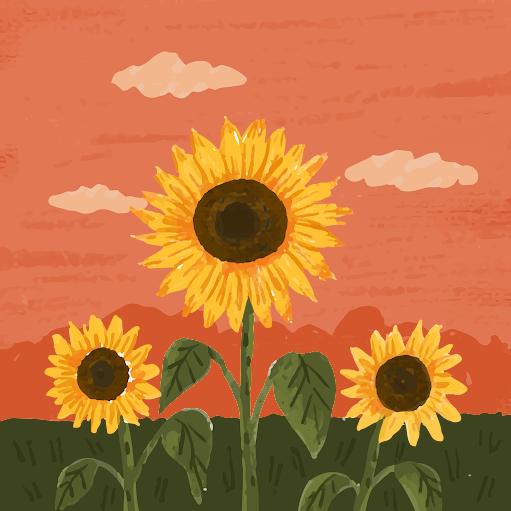 Xuân Nguyễn picture