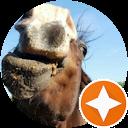 Paardmeneer pauwll