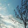 hüseyin akkuş